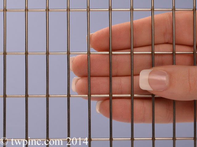 Welded Stainless Steel Wire Mesh from TWP Inc.