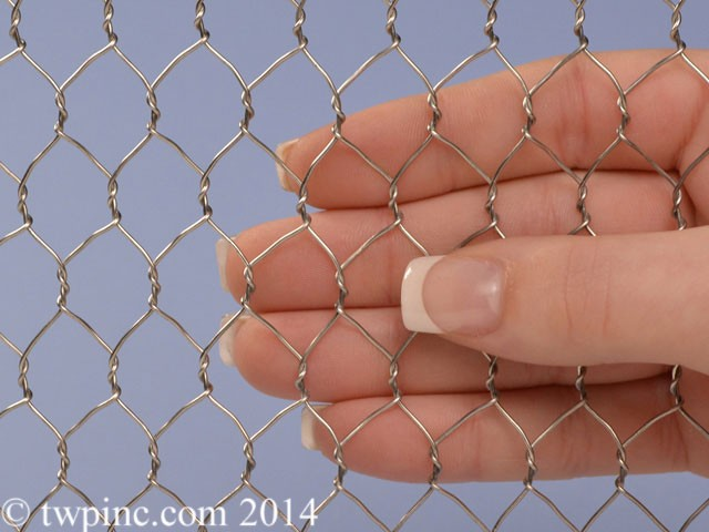 "1/2"" Stainless Hexagonal Hex mesh Chicken Wire"