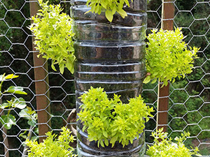 5 Wire Mesh Vertical Garden Design Ideas